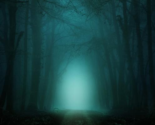 paura paesaggio nebbia